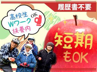 【りんご農家スタッフ】\りんご収穫作業STAFF大募集★/短期勤務もOK!週1日/2H~!【高校生・Wワーク・扶養内】全部OK!履歴書不要でスグ働ける♪