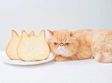 可愛すぎる食パンとして話題◎+゚* 大人気の高級食パン専門店 「ねこねこ食パン」も併設しています!