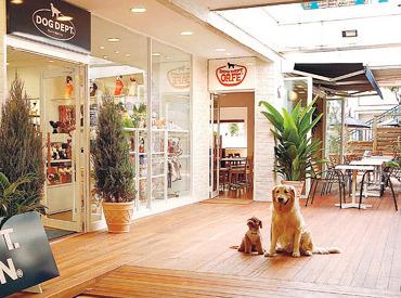 【カフェSTAFF(ホール・キッチン)】『DOG DEPT 東京スカイツリータウン・ソラマチ店 』STAFF募集!愛犬とカフェタイムOKなオシャレな店内♪社員登用制度有★