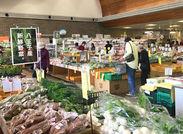 八王子産の野菜や果物をはじめ、地元の食材をつかったお惣菜・ジェラートなど☆毎日たくさんの方がお買い物されています!