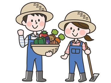 野菜を収穫するなど、未経験でも出来る とってもシンプルなお仕事です☆ バイトデビュー/パートデビューも大歓迎!!