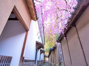【喫茶スタッフ】田中本家博物館内の喫茶店♪四季折々の景色を見ながらゆったりお仕事。*≪週1~OK≫お仕事は16:00終了なのでプライベートも◎