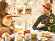 \ドッグカフェもあります♪/ 看板犬のメメちゃんもいます♪ 犬好きさんにはたまらないカフェです☆