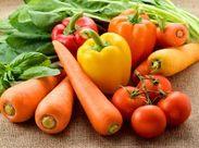 <日本の青果物が集まる大田市場> 活気に溢れていて働いているとエネルギーが沸いてきます!