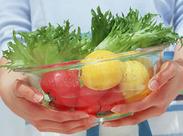 野菜の仕分けや袋詰めなど、慣れてしまえば簡単で、楽しいお仕事です♪
