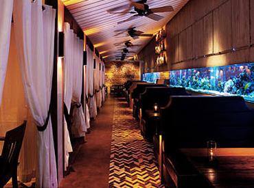 【ホールStaff】。+ アクアリウムが演出する楽園リゾート + 。照明を落とした店内でキラキラと泳ぐ熱帯魚…極上のひと時を過ごせる人気Dining