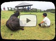 紹介します、友達のA君とBさん…R君。そして牛の太郎です!…なんて貴重な体験ができるのもヒューマニックのリゾバだけ!?