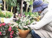 水やりなどの植物のお世話・商品補充など、まずは出来ることから始めましょう!!