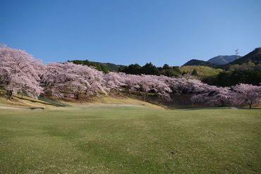 神奈川県の中でも人気の山岳ゴルフコース♪自然豊かな環境で気持ちも心もリフレッシュしながら働けますよ*