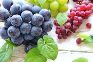 季節の新鮮野菜・果物・お米・パン・お菓子・手作り工芸品などetc・・・