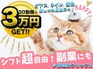【!?】みんなビックリ【!?】 ★30勤務で3万円GET★ \迷ってるなら応募しちゃば?!/ だって…週1~チラシを投函するだけ♪