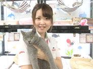 動物のしつけの仕方やえさのあげ方など学べます◎慣れたら動物のお世話もお任せするので楽しみにしててくださいね!