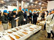 ≪中央卸売市場内≫人気のシンプルワーク♪ 鮮魚を、台車を使って運ぶだけ☆ 深夜の時間を有効活用しませんか★