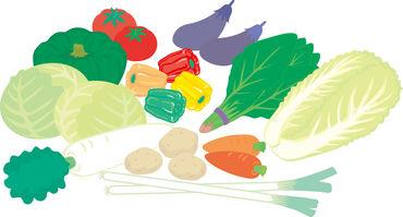 農家のみなさんが心をこめて作った野菜や果物たちがいっぱい♪むずかしい作業はないので、ご安心くださいね!