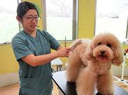 """""""けやき動物病院 富士見""""は、犬・猫・うさぎを診療している動物病院です◎ 院内には、かわいい動物がたくさん♪*"""
