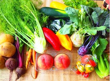 ≪出荷するための準備をお任せ◎≫ 扱うのは果物や、野菜など♪ もちろん商品知識は不要です!