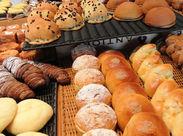 人気のパン屋さんなので、売切れで定時より早く終わることも♪その場合も日給は満額支給します★20~60代の男女スタッフ活躍中!