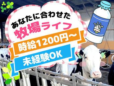 「今後資格を取る予定」という方も 高時給1200円~で取得費用を稼げます♪ 資格取得後⇒正社員へのステップUPも応援!!