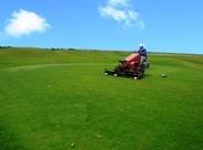 ≪芝生管理のレアバイト≫ 自然好きにはもってこい! お仕事もとってもシンプルですよ☆