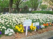 平和大通りの花壇の植え替えにも参加☆ 地域貢献にも積極的な地元密着企業です♪
