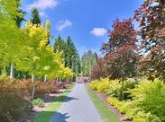 庭園には国内外からの観光客も多く訪れます。色んな人の喜ぶ顔を間近で見ることができる、とってもやりがいがあるお仕事です♪