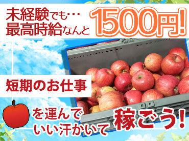 【11月28日までのりんごの荷受】 りんご箱をトラックから荷降ろしするのがお仕事です!体を動かすアクティブバイトです♪
