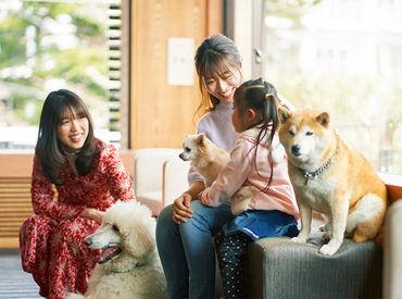 【レストランホール】愛犬と食事が楽しめる+゜ペット連れ専門ホテル★<未経験歓迎!>いつもと違った空間で短期バイト*冬の想い出作りにも♪