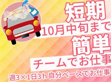 【洗車STAFF】◆スキルは一切不要!◆誰でも時給850円スタート!☆しかも…1日3h~OK!家事や遊びの合間にジブンペースでオシゴトOK
