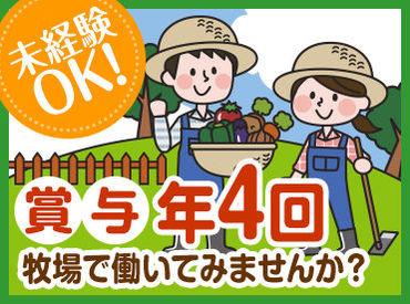 季節ごとに変わる景色は、働くうえでの癒しの1つ♪せっかく北海道で働くなら、絶景を満喫できる職場にしてみては?♪