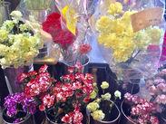 働く理由は…≪お花が好き≫だけでOK♪未経験者さんも大丈夫!お仕事はイチから丁寧にお教えします◎