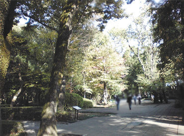 勤務地は小金井公園内にある景色のいい屋外博物館◎ 来園者さんとの会話を楽しみながら気持ちよく働きませんか♪