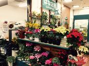 生花が好きな方大歓迎♪ 慣れてきたら、花束・アレンジメントの作成も教えていきます♪