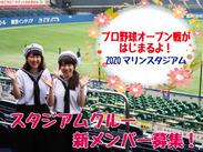 プロ野球のお仕事!未経験大歓迎!スタジアムの熱気を肌で感じてください! 花火もあがる気持ちのいいスタンドですよ♪