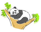 上野ならでは♪&数量限定のパンダの和菓子が大人気☆まずは元気よくあいさつが出来ればOK♪※画像はイメージ