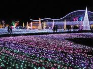\ここが職場です!/ 今年で16回目を迎えるフローランテ宮崎のイルミネーションは、100万球の光が園内を隅々まで彩ります!