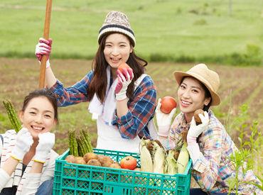 【農業手伝い】[自然の中の生活に憧れる!][昔畑の手伝い喜んでしてたなあ…]それが≪時給付≫で叶うとしたら…?夏の短期OKだとしたら…?