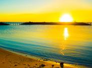 日の出とともに朝からお仕事◎12時には終わるので午後の時間を有効に使えますよ!