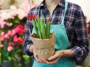 お花のメンテナンスや接客などをお任せします♪「ありがとう」と直接言ってもらえるお仕事です★