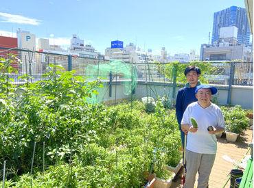≪野菜作りの写真です★≫ 太陽を浴びながら、のびのびオシゴト♪とっても楽しいですよ◎