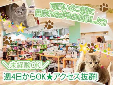 フルタイムさん大歓迎します☆猫ちゃんに囲まれてのお仕事!土曜日曜出勤できる方は大歓迎します☆