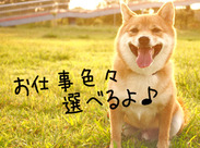 犬も驚く【激短1日&日払いOK!】 *次の仕事見つかるまでの繋ぎに *歓送迎会の飲み会代に ⇒春休みはサクッと効率よく稼ごう♪