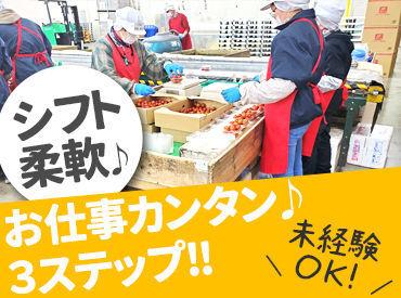 ≪未経験さん大歓迎!≫野菜を取って袋に入れるカンタンシンプル作業♪イチから丁寧にお教えしますので安心してくださいね◎