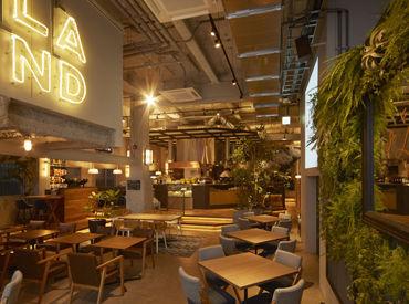 【キッチンSTAFF】★NEW STAFF大募集★地中海をイメージしたカフェが渋谷にOPEN!WIRED CAFEなどを手がける、カフェ・カンパニー新業態。