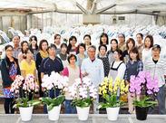 """""""贈るお花""""で有名な<胡蝶蘭>を育てるお仕事◎ 立派に咲いたお花を送り出すのが嬉しい♪ あなたもきっとハッピーな気持ちに。o○"""
