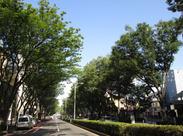 【アクセス抜群の好立地】 表参道駅と外苑前駅からは徒歩5分の好立地。通いやすい職場です!仕事終わりにちょっと買い物にも◎