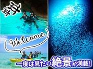 世界最高級の海★有名な「青の洞窟」では見たこともない幻想的な風景に出会えます!海が大好きな仲間と世界最高級の海を体験★