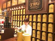 。゚*お茶の有名店で働くチャンス*゚。 ここでしか経験できない喜びや充実感があります! お互いフォローし合って働いています♪