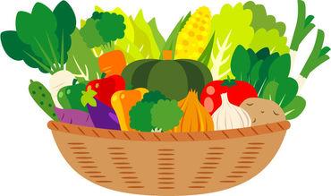 野菜や花を元気に育てるのに必要な肥料&農薬! 難しいことはないので、知識なくてもOK◎