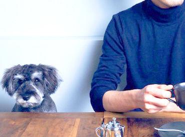 【コルドはペット同伴可のお店】 ワンちゃん好きにはたまりません☆ ふとした時に目が合ってほっこり! なんてこともしばしば♪