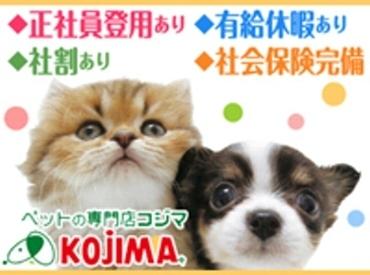 【販売・商品管理スタッフ】★ペットの可愛さを一緒に伝えてくれるスタッフを大募集★可愛いワンちゃんやネコちゃんに毎日囲まれ、とても癒されます♪